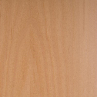 Beech Faced Plywood